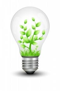 Bombillas halógenas, fluorescentes o LED ¿cuál escoger?